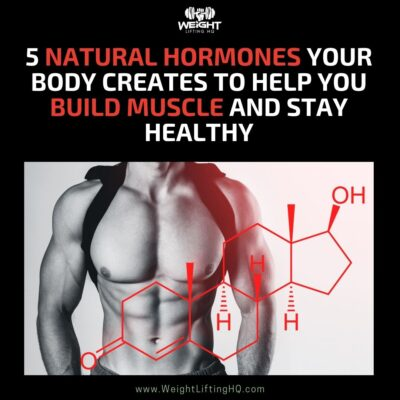 5 Natural Hormones Your Body Creates to Help You Build Muscle and Stay Healthy