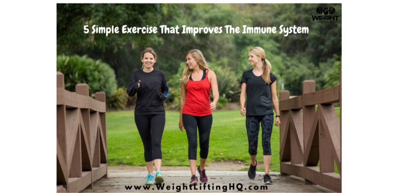 5 Simple Exercise That Improves The Immune System